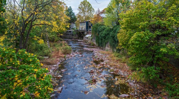 new jersey environment, water, stream, Frenchtown