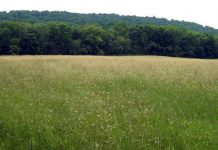 new jersey environment news, open space preservation