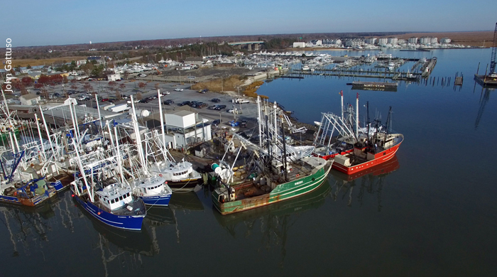 In new jersey opponents of offshore drilling gear up for for Cape may fishing charters