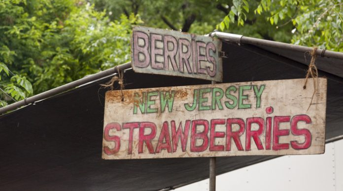 farmers market, new jersey berries