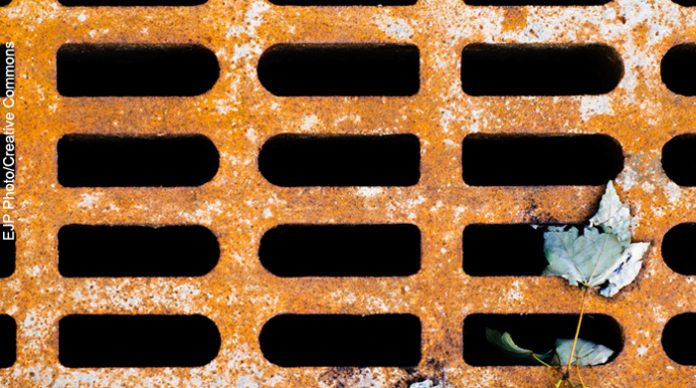 sewer grate, new jersey