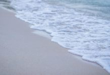 beach and seawater
